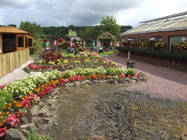 Bedding display at Rosebank Garden Centre