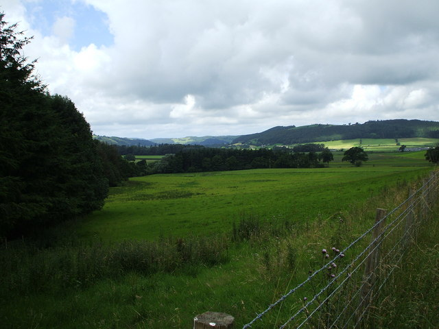 Fields near Trawscoed Mansion