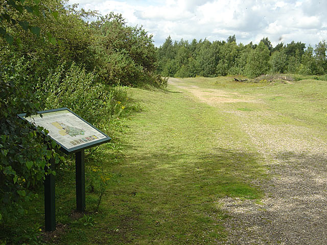Austerfield Mosaic Quarry