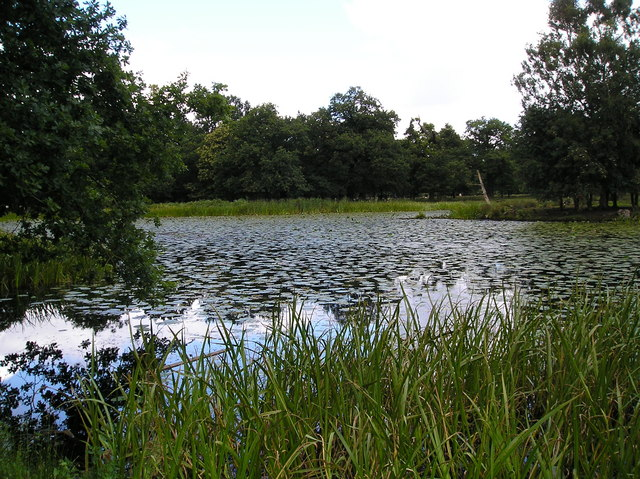 Island Pool, Dunham Park