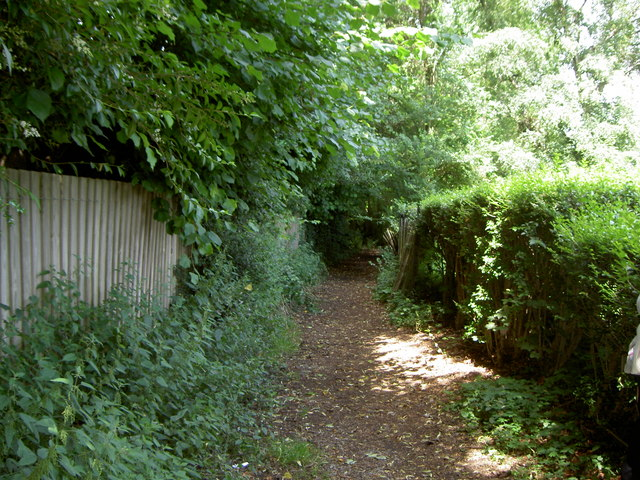 Footpath in Wirral Ladies