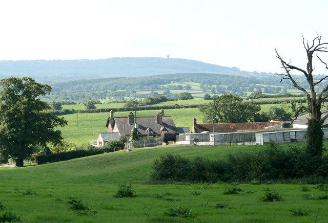 2007 : Barrow Farm, nr. Witham Friary