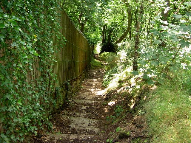 Footpath Steps.