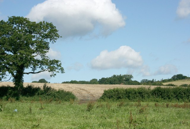 Fields near Witham Friary