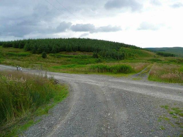 Crossroads in the Eskdalemuir Forest