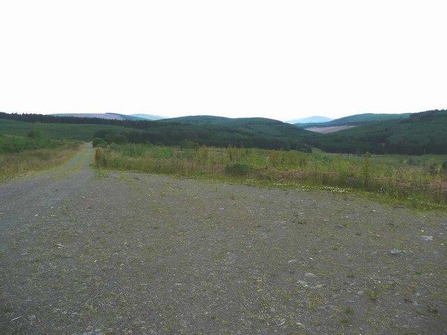 Forestry track above Old Garwaldshiels
