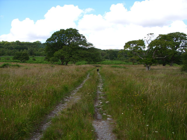 Track leading to Garlies Castle