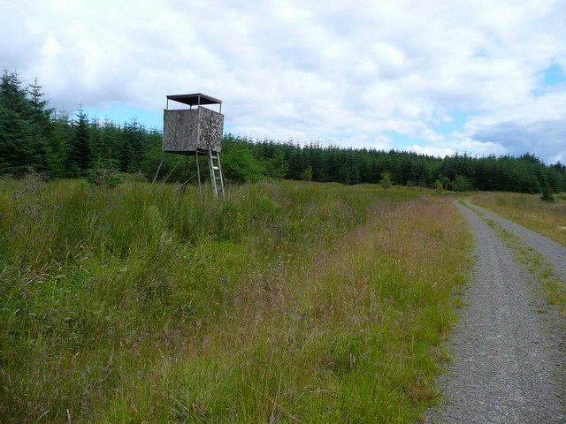Shooting platform in the Eskdalemuir Forest