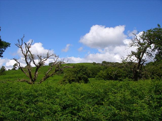 Knockman Hill