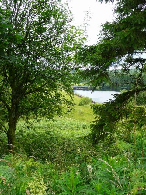 Through the trees to the Black Esk Reservoir dam