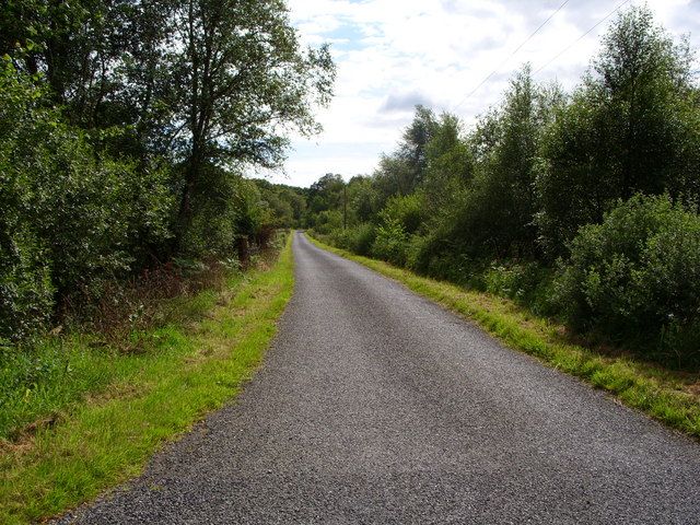 Minor Road leading to Auchinleck Farm