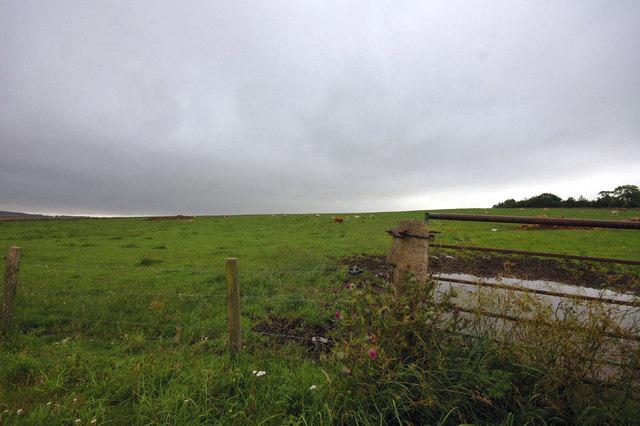 Field by Broadsea Farm