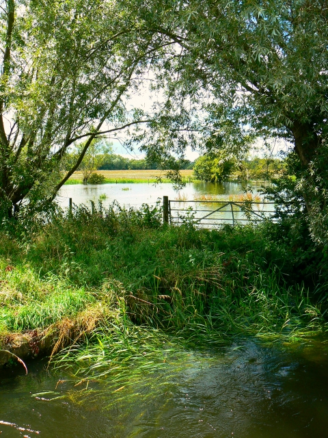 A view from Weaver's Bridge, Cricklade