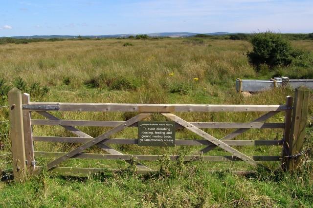 Field gate, Lymington-Keyhaven Nature Reserve