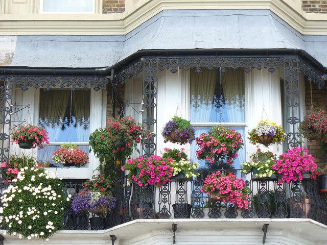 Paragon Balcony