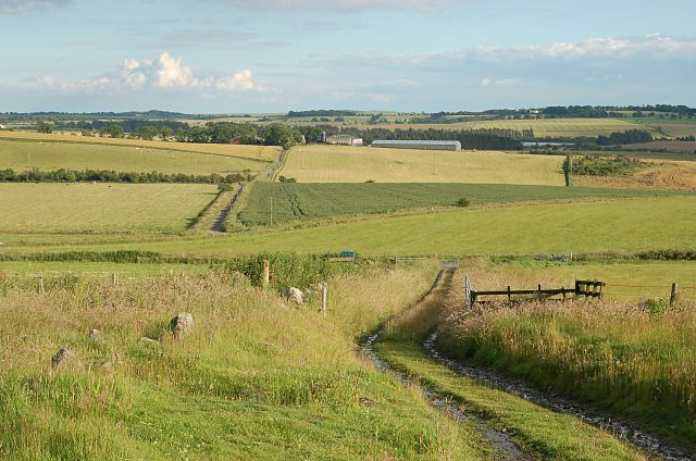 Track to Drumcarrow