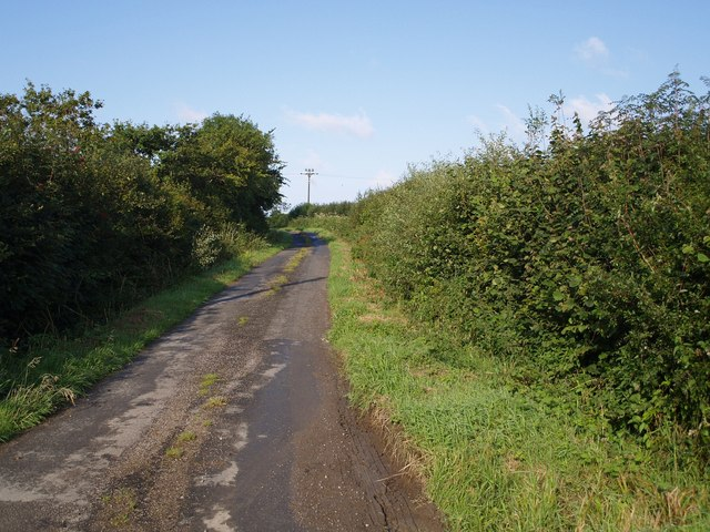 Lane to Hollacombe