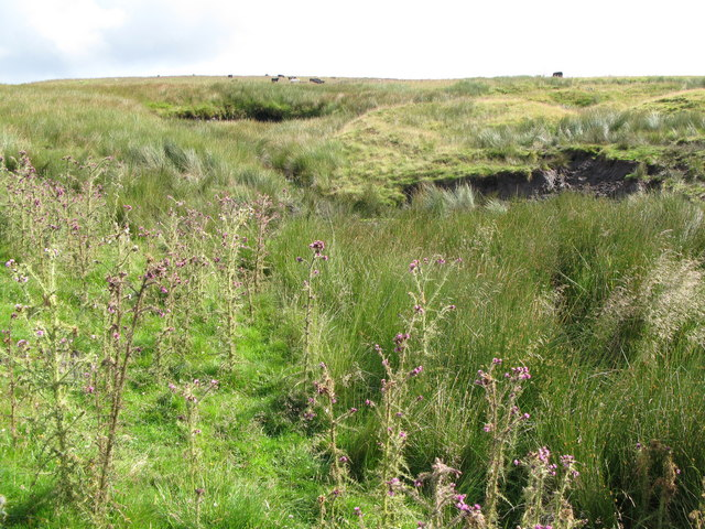 Sike and moorland near (disused) Northgrain Quarry