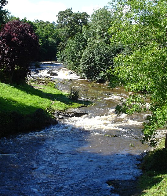 River Rhiw, Berriew