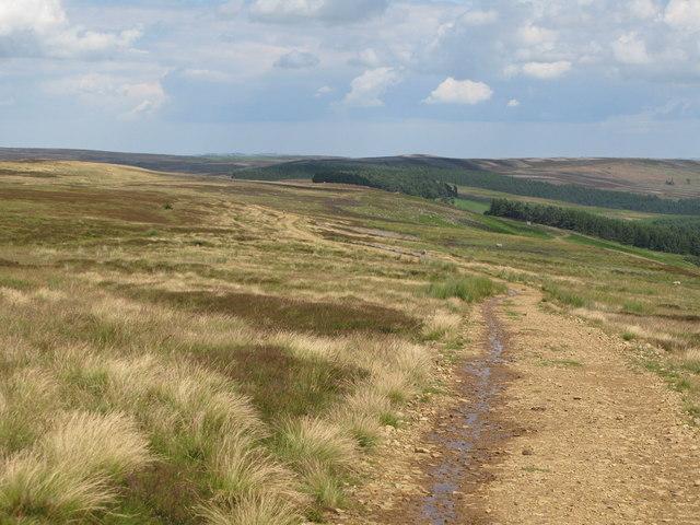 Track across Riddlehamhope Fell