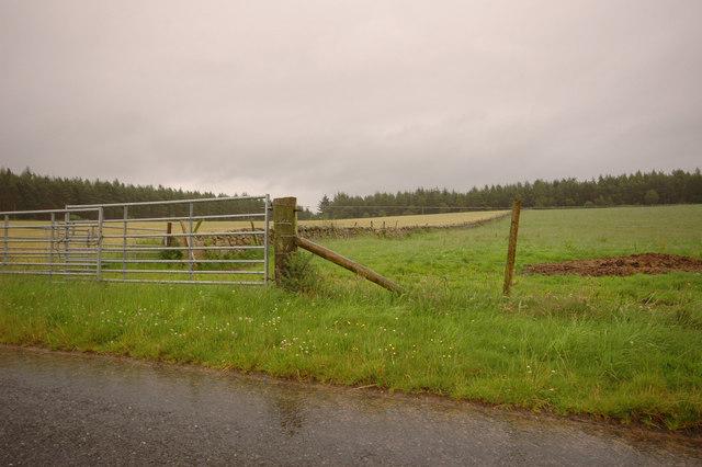 Field by Dalfling Farm