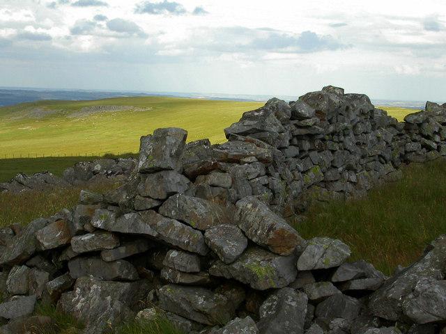 Dry stone walls.