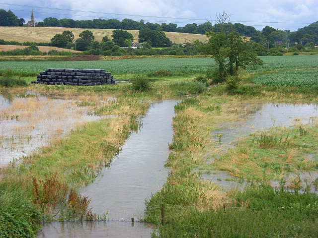 Midgham Marsh