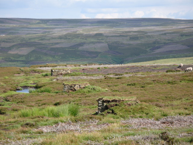 Grouse butts on Nookton Fell