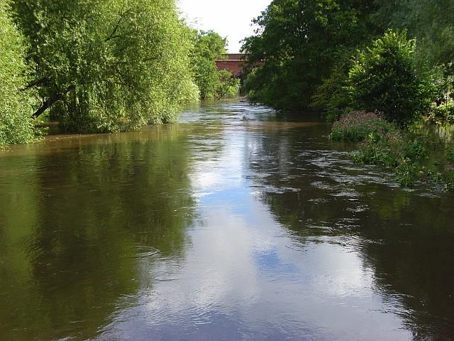 The River Loddon