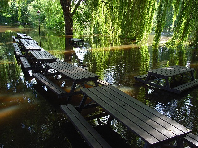 Beer garden, The George, Loddon Bridge