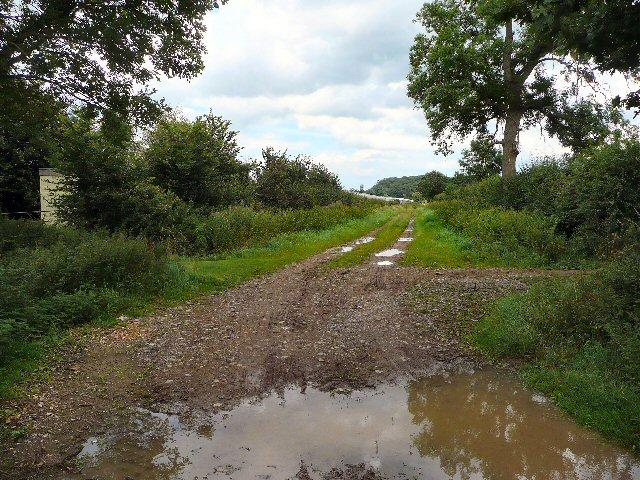 Farm track near North Bradon.