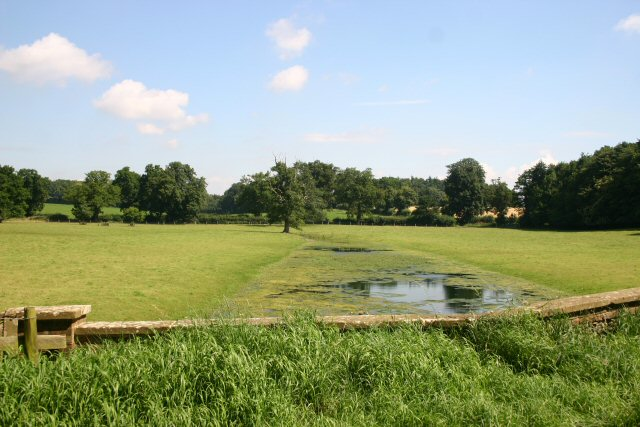 Water meadows at East Lexham Hall