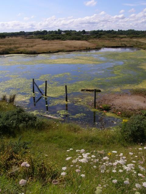 Lagoon, Pennington Marshes