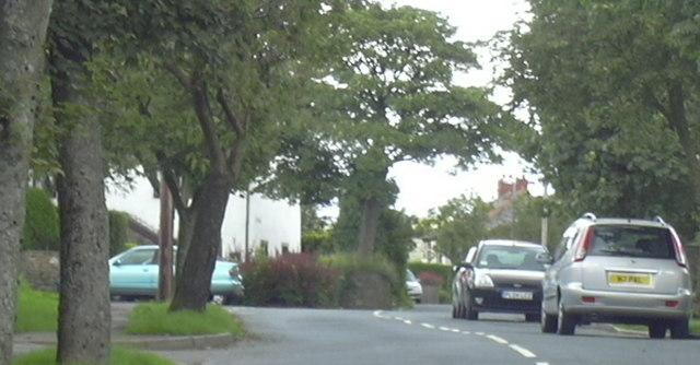 Bankside Lane