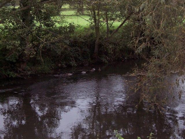 River Mells