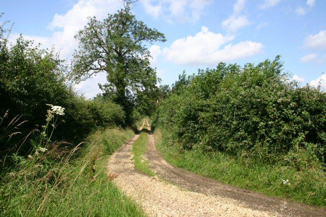 Farm track north of Litcham