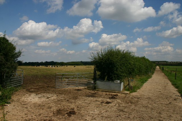 Track and pasture at Field Barn