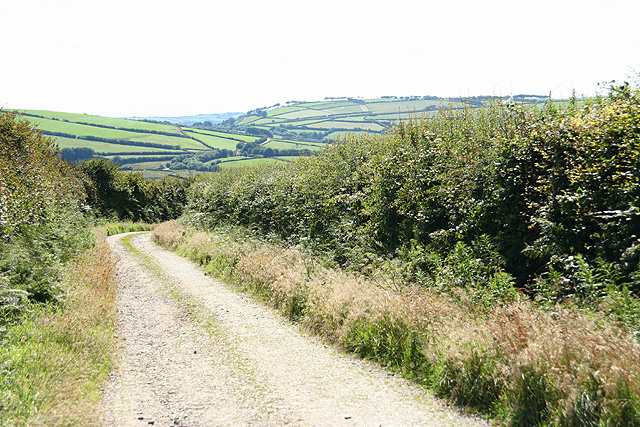 Parracombe: bridleway to Lady's Well