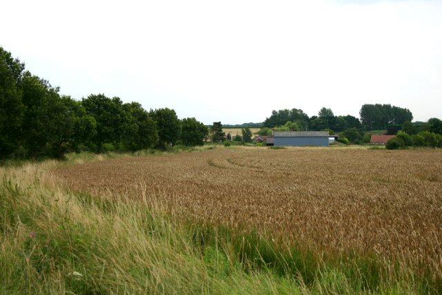 Sunnyside Farm, Mileham