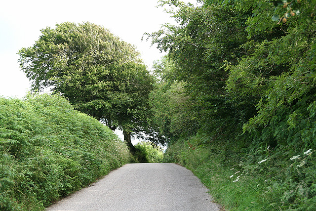 West Buckland: towards Catriage Hill