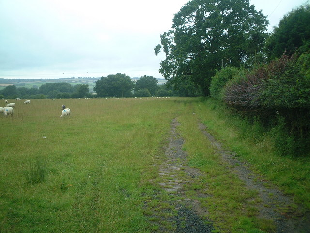 Footpath to Nether Hollies