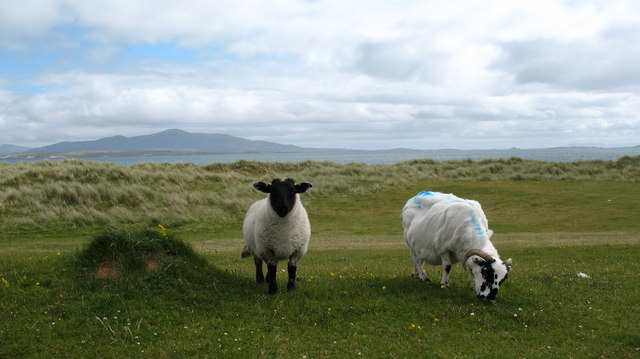 Local residents on Berneray.