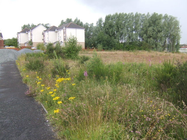 Housing and waste ground in Bellshill