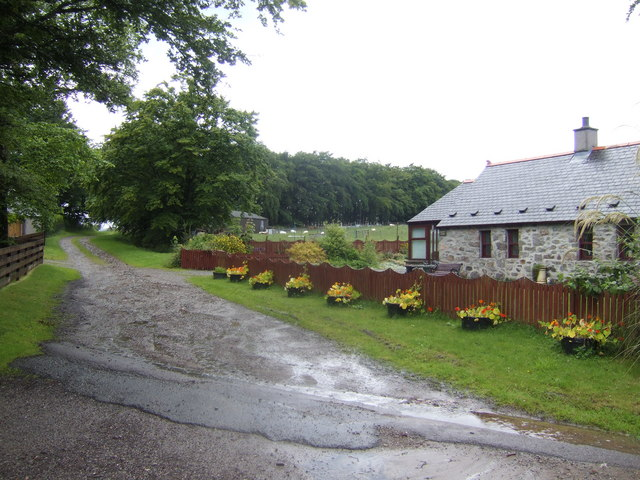 The road to Chapelton