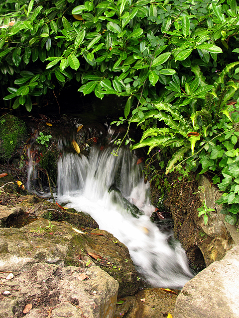 Waterfall at Waterfall Cottage: Woolstone