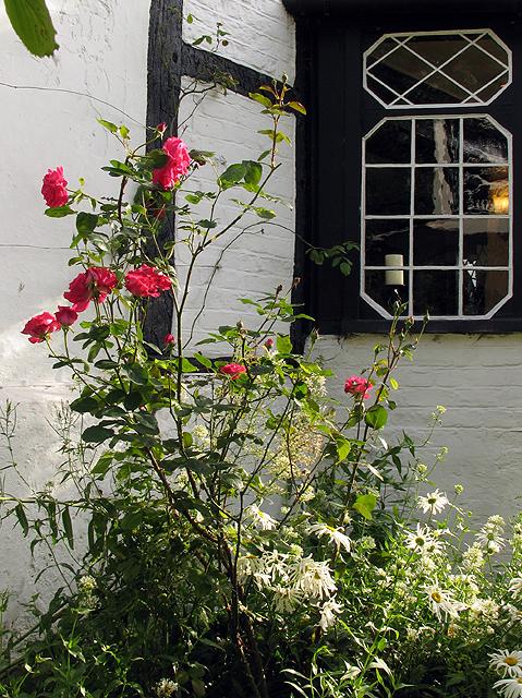 White Horse Inn Woolstone: Garden