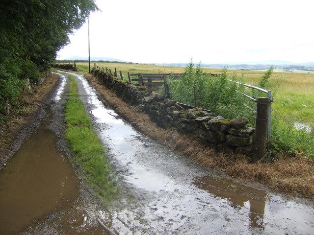 Farm track near Bourtie Lodge