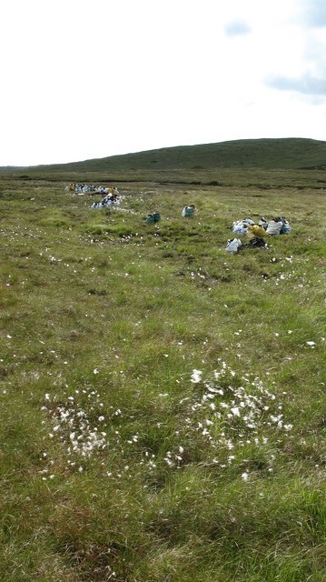 Bagged Peat on the Moor