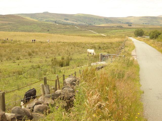 A sunny trek across Blackbank