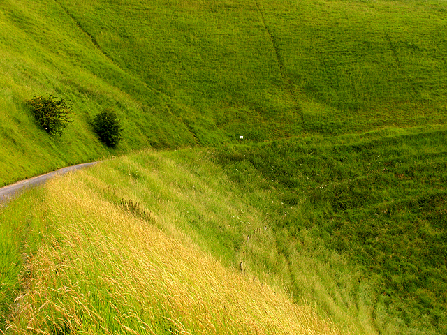 Dragonhill Road: Dragon Hill